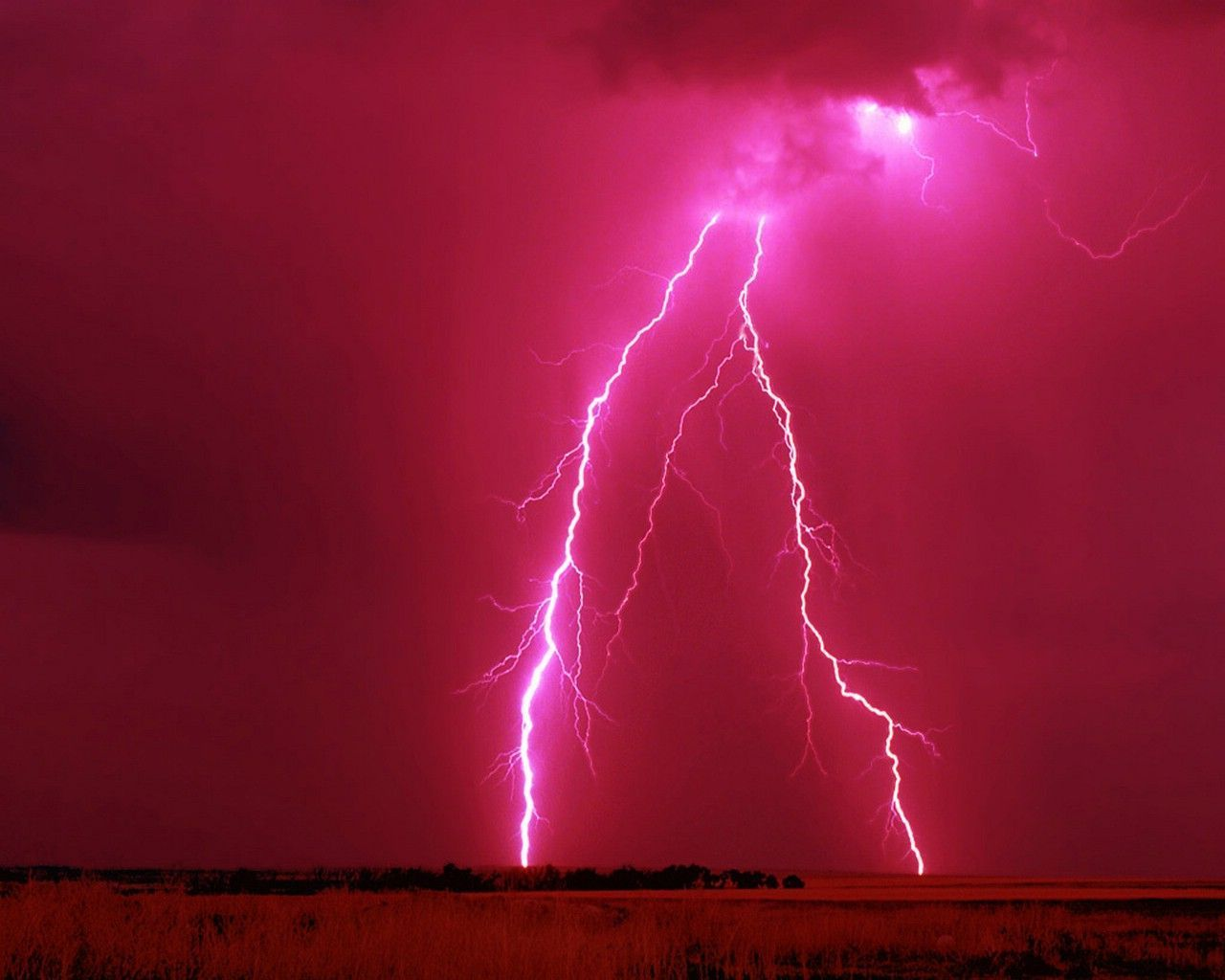 http://www.documentingreality.com/forum/attachments/f181/221275d1288542432-lightning-beautifully-amazing-lightning-20strike.jpg