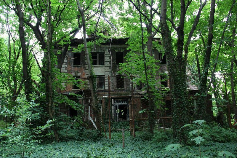 abandoned-island-new-york-city-north-brother-island-3.jpg